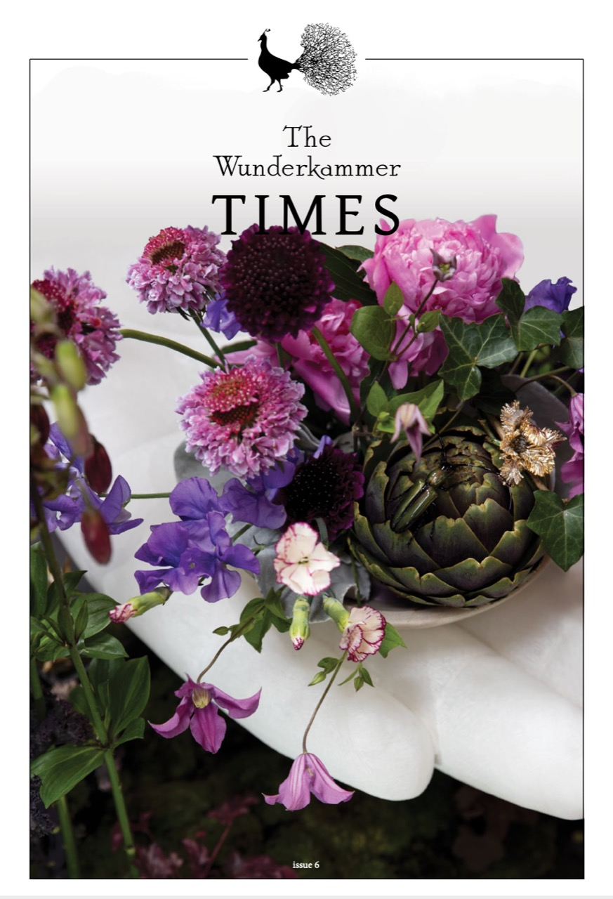 Read The Wunderkammer Times Issue 6